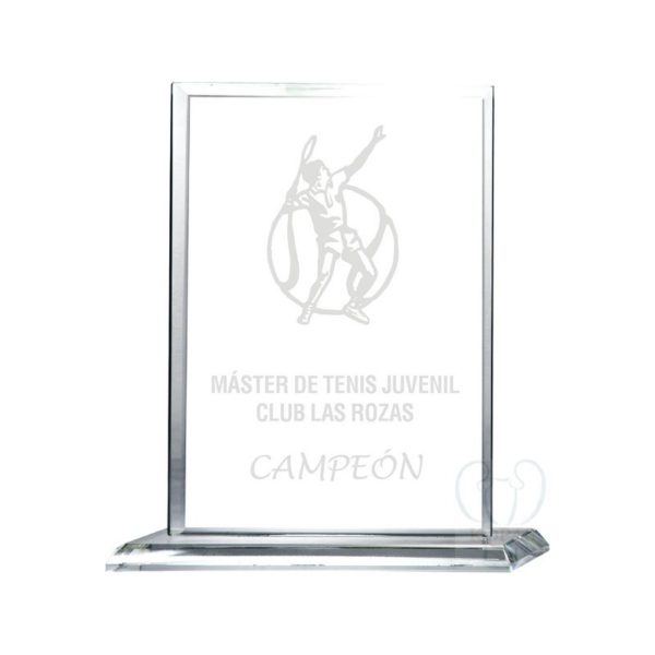 Trofeo cristal transparente