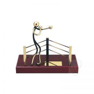 Trofeos de boxeo