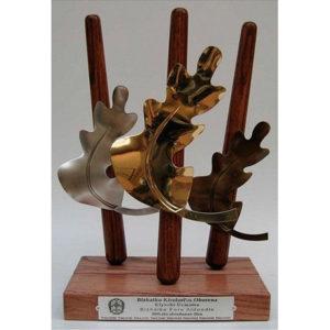 Trofeos y trabajos de diseños especiales